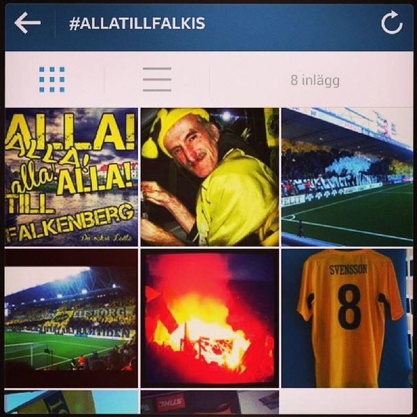 #allatillfalkis